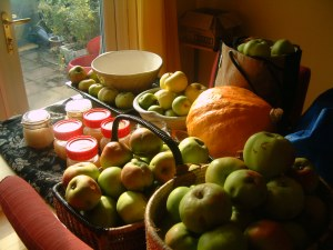 In the middle of processing the apple glut of 2011