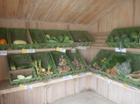 A local organic farm that sells direct
