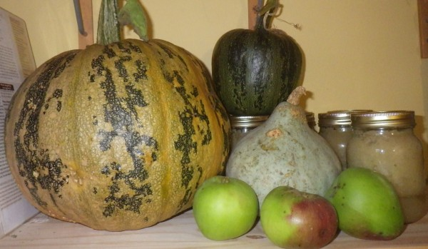 Squashes and apples