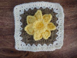 Woolly daffodil