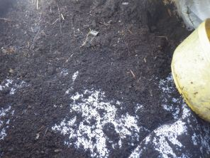 Homemade compost - no bags