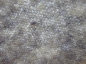Knitting still visible