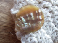 Another antique mother of pearl button