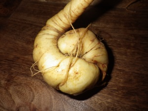 The parsnip of happiness?