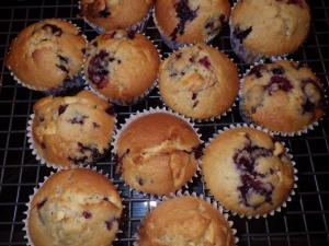 Blackberry and white chocolate muffins for the last day