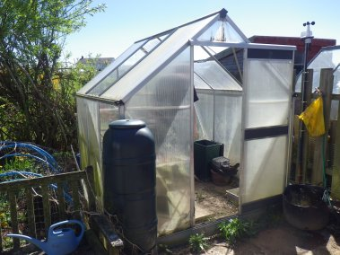 Our very sad old greenhouse