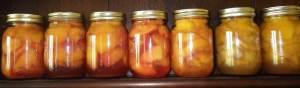 A row of jars