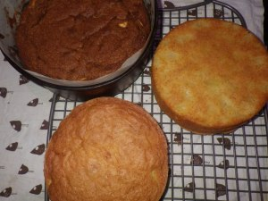 Two different sorts of apple cake