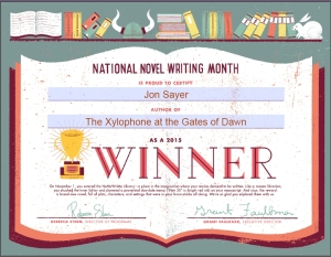 NaNoWriMo Success