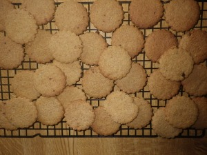 16 Biscuits 2