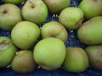 Home apples