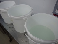 brine buckets