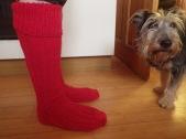 6 Socks 5